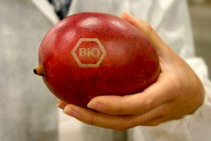 So können wir künftig Bio-Obst ohne Plastik einkaufen.