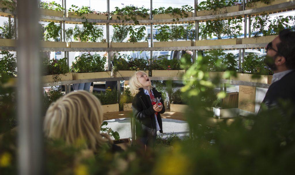 Auch für Kinder bietet der Garten viel Potential.