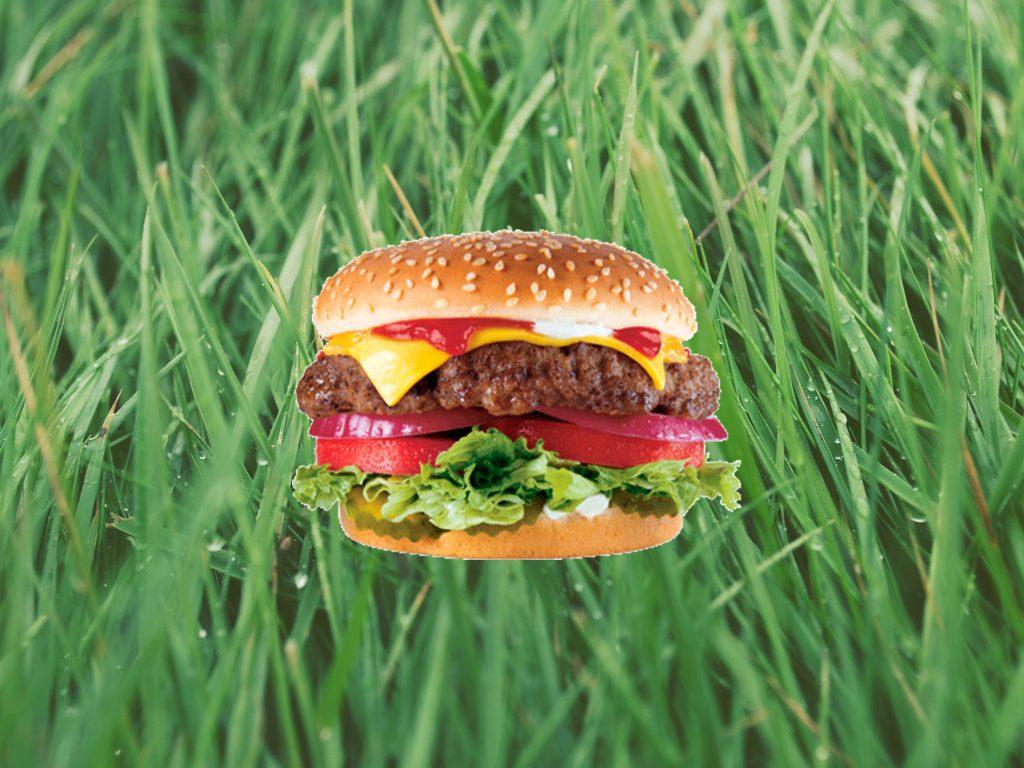 In Zukunft essen wir Burger ohne Fleisch, Soja, Seitan.